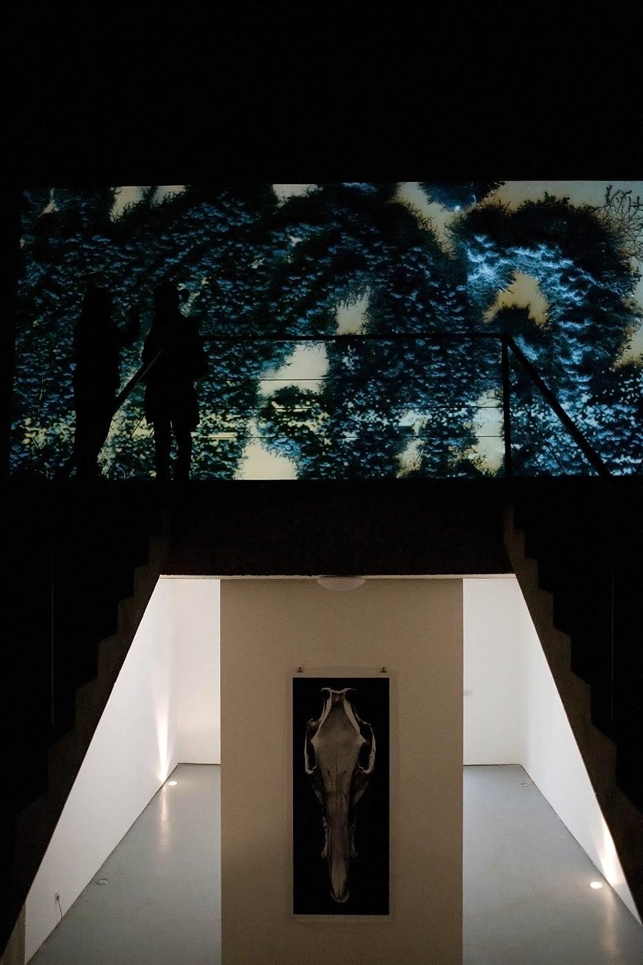 Han Hai Exhibition